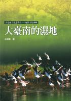 大臺南的濕地